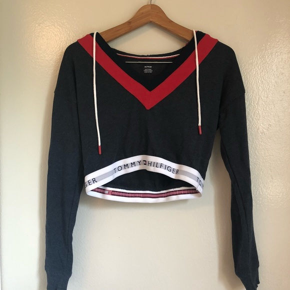 53d732215ff8b3 Urban Outfitters Tommy Hilfiger Cropped Hoodie. M 5b09d40672ea882dfb4a2ef3